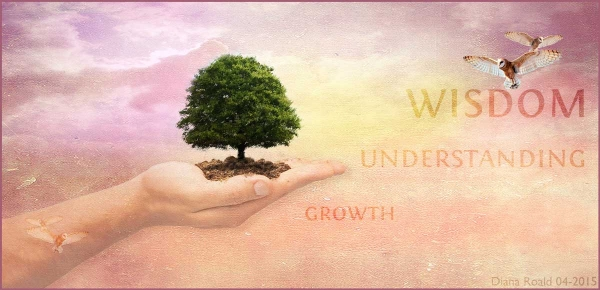 Wisdom leads to understanding and growth